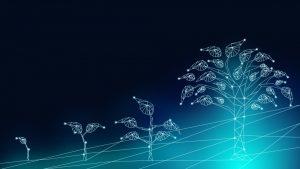 Digital marketing strategy evolution